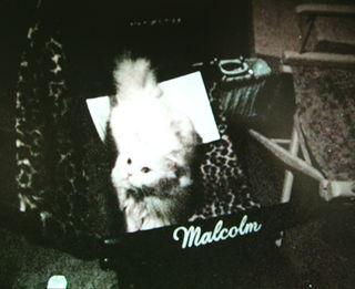 Rosemary-Malcolm