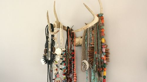 Antlers2
